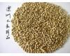 我司常年大量供应优质澳洲大麦。