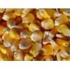 长期寻找玉米合作伙伴,湖北富亿农求购优质玉米